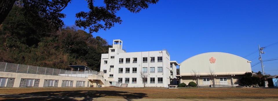 shimanotable-zenkei